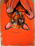 flyingfox